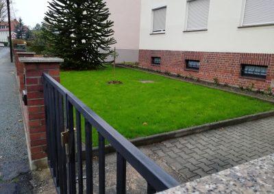 Neuanlage von Rasen im Vorgarten nachher