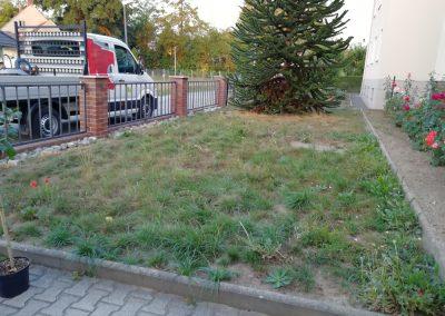 Neuanlage von Rasen im Vorgarten vorher